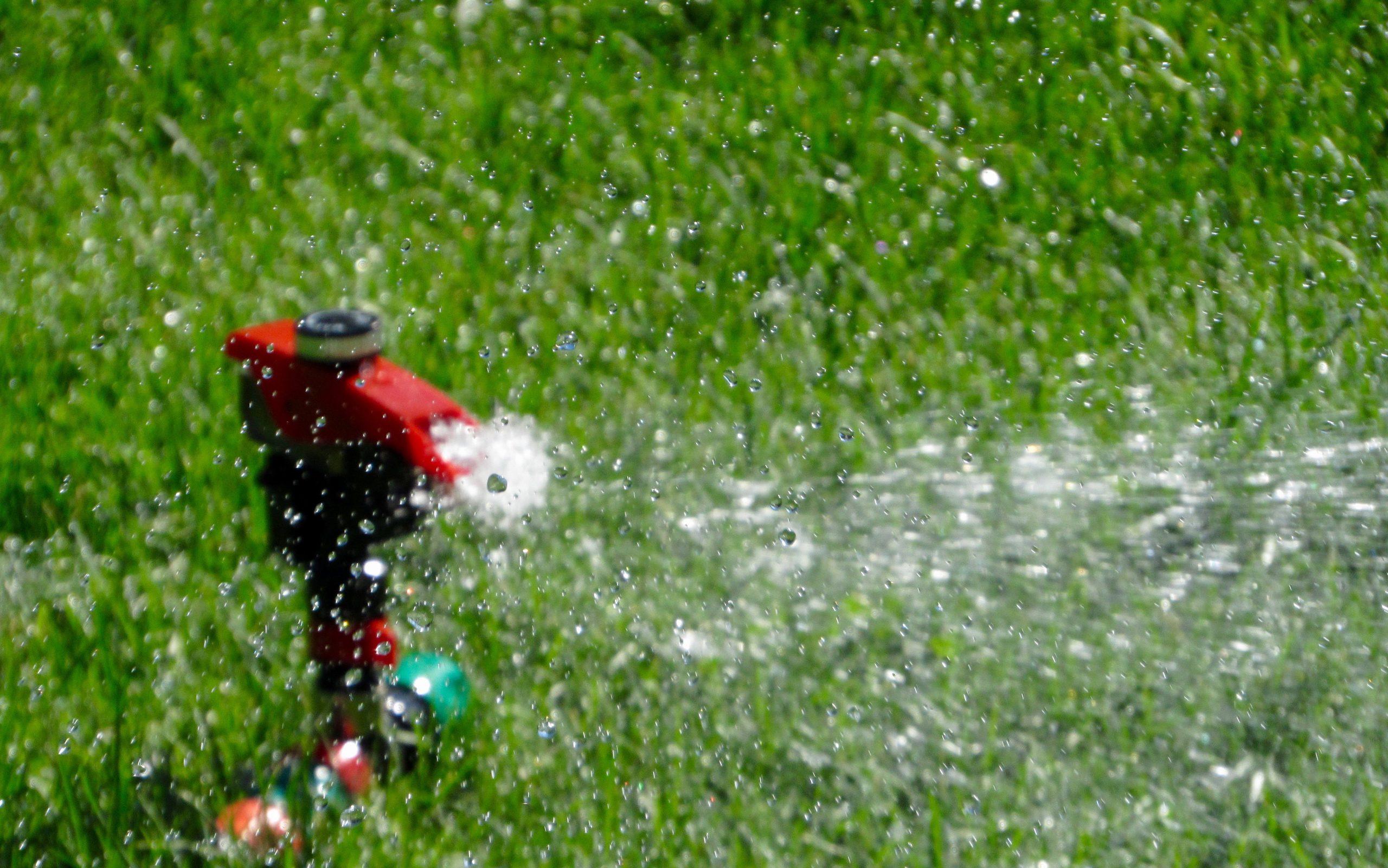 The Sprinkler