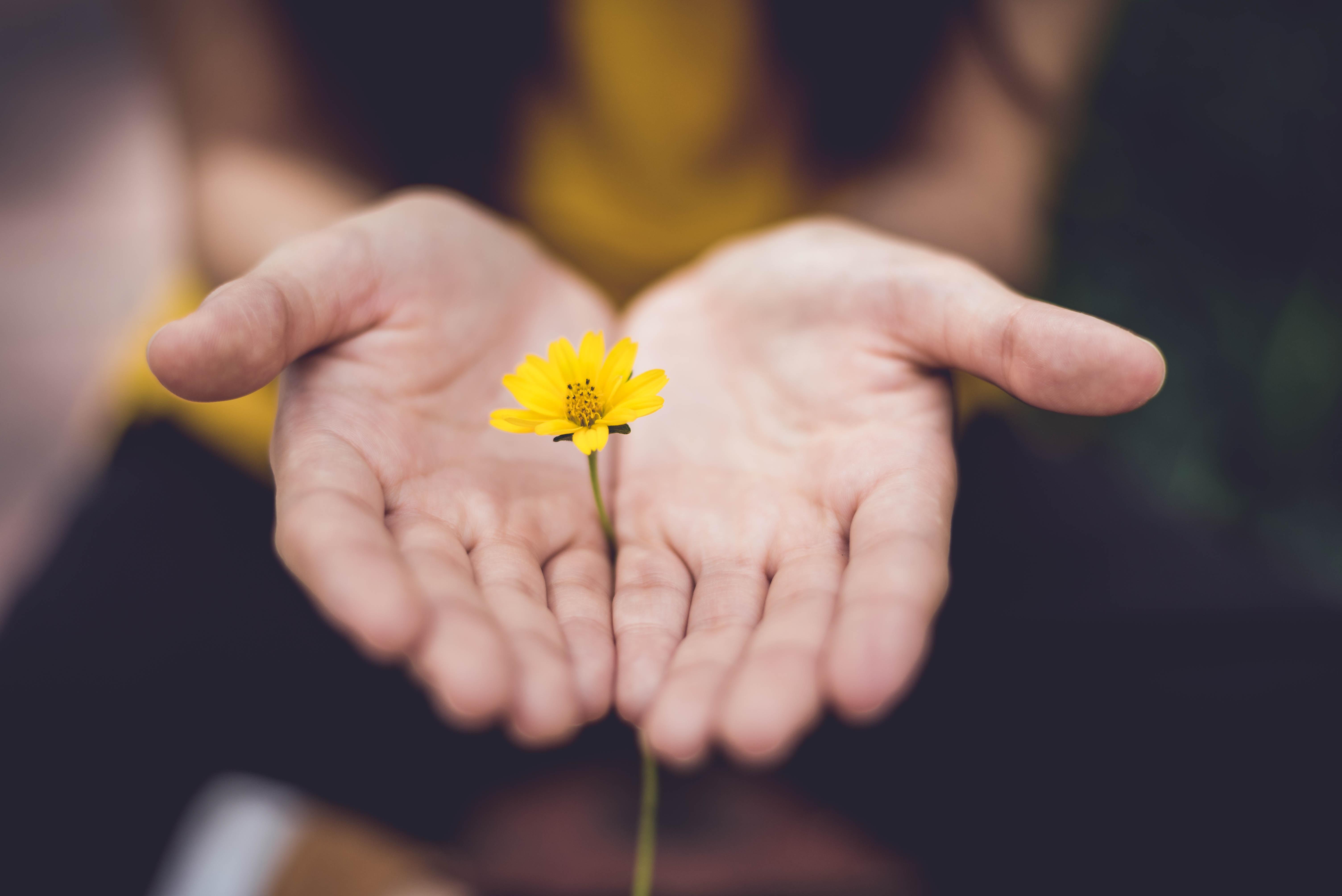 Choosing Hope Against Hope