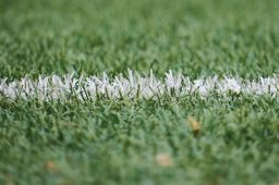 The FootBlog: How My Obsession with Football Hurt My Soul