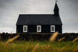 What Will Become of the Church