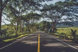 A Roadmap to Resetting Your Vision