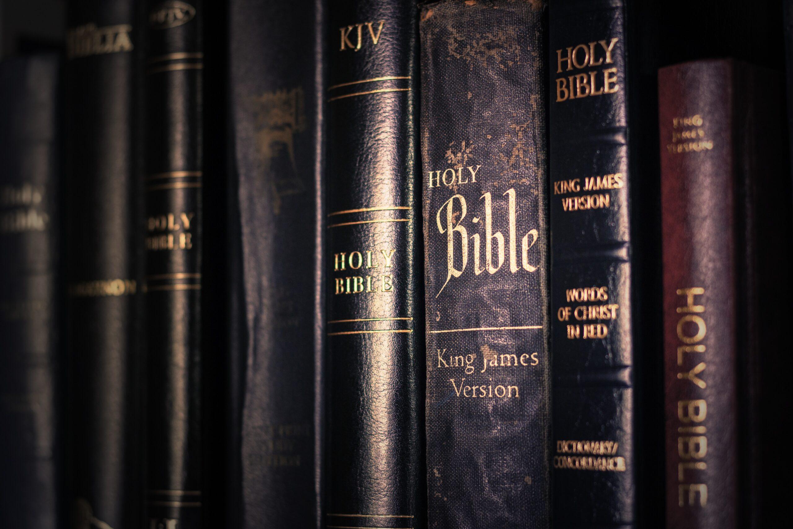 My Bible, My Life